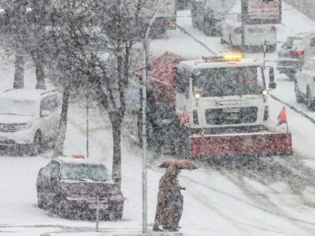 Львів'яни, тримайте шапки: шквальний вітер влаштує ігри на виживання 23 січня