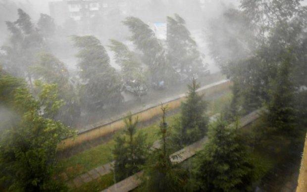 Стихія знищила десятки садів і виноградників