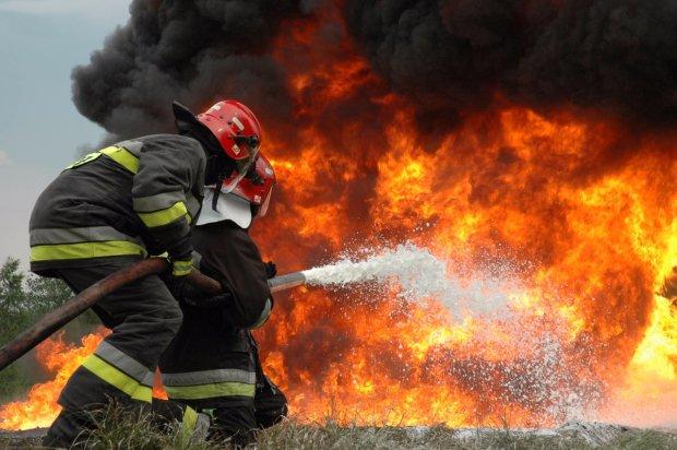 Сгорела крупная птицеферма: сотни тысяч цыплят превратились в угольки