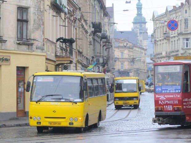 Львовских маршрутчиков обложили рекордными штрафами: за что наказывают