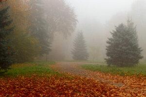 Погода в Україні, фото: Информатор Никополь