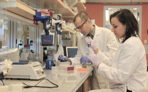 Ученые нашли идеальных доноров для людей