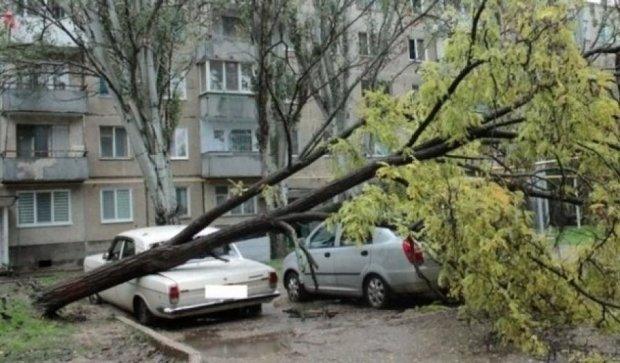 Киевлян накроет шторм и грозы