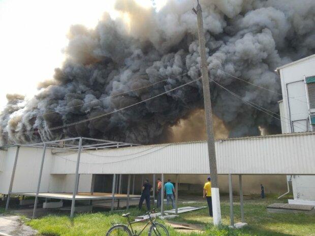 Масштабна пожежа охопила Одещину, дим до небес: перші подробиці і фото з місця