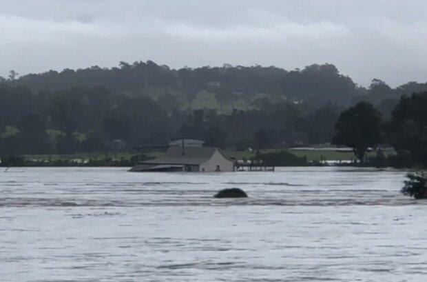 Наводнение в Австралии, кадр из видео