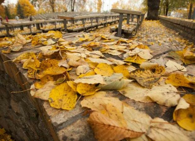 День чудовий: якою буде погода у Запоріжжі 13 листопада