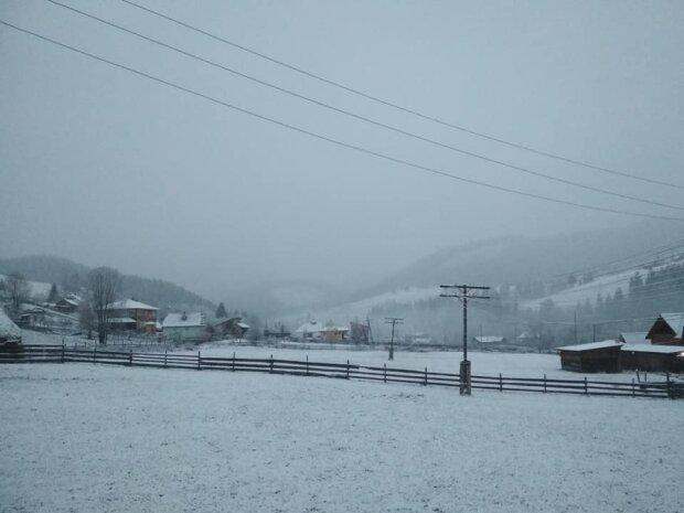 У горах на Буковині випав сніг