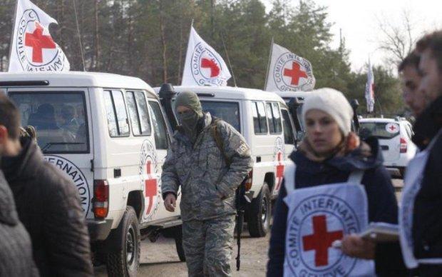 Всемирный день Красного Креста 8 мая: история самой гуманной организации