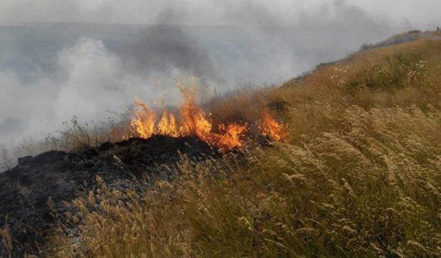 Біля Коблево горить 40 га трави (фото)
