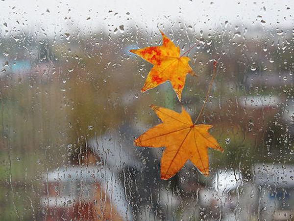 Погода на выходных приятно порадует украинцев