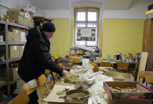 На Буковине нашли зуб древнего зубра, ученые в экстазе: 300 тысяч лет назад