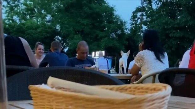 """В одесском ресторане собаку выпустили погулять на стол: """"Это им блюдо подали"""""""