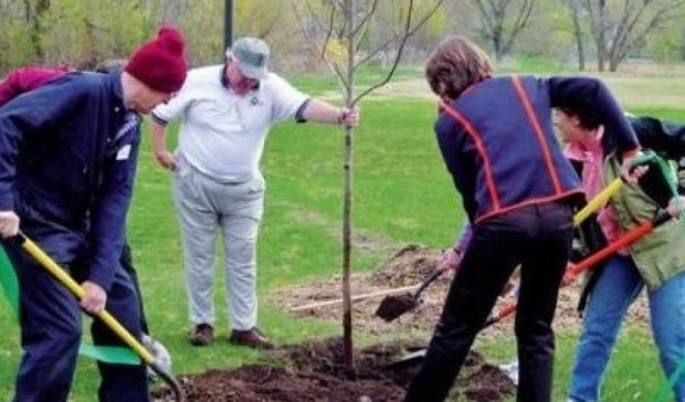 В Украине стартовала Всемирная акция по высадке деревьев (видео)
