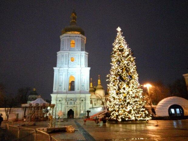 Ялинка в Києві, фото Strana.ua