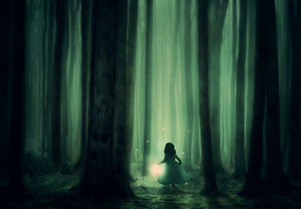 Живая гирлянда - зачем светлячки светятся в темноте