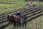 Українські фермери отримають 400 млн від Європейського банку: на що підуть ці гроші