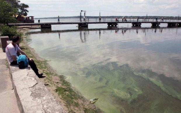 Смертельно опасная рыба появилась в украинской реке