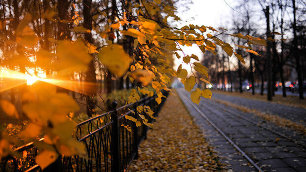 Тепла осінь закохалася у Львів: чим здивує погода 17 листопада