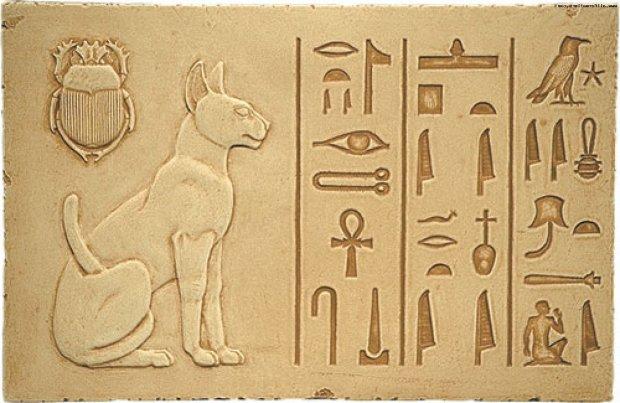 Любовь к кошкам: удалось раскрыть давнюю тайну египтян