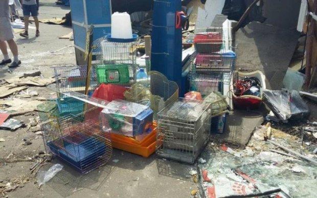 Демонтаж рынка в Киеве: под завалами нашли десятки трупов