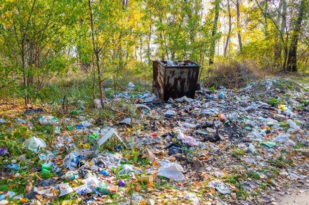 Дніпро тоне у смітті: популярна зона відпочинку перетворилася у звалище, кадри свинства