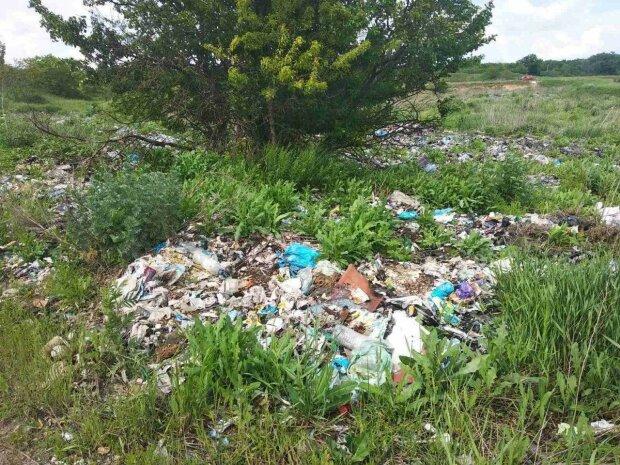 несанкционированные свалки на территории Попаснянского района \ фото ГЭИ
