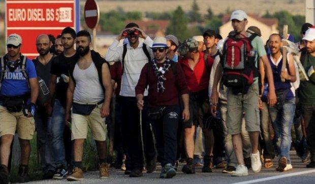 Болгария, Сербия и Румыния готовы закрыть границы из-за потока мигрантов