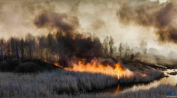 Пожар, Скрин, видео YouTube