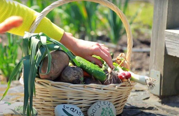 овочі, скріншот з відео