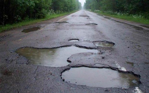 Дорога ада: трассы Луганщины превратились в непролазные чащи