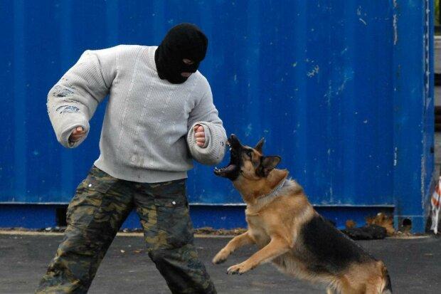 У Харкові побили батька з дитиною, по-звірячому знущалися і нацькували собаку: копи шукають садистів