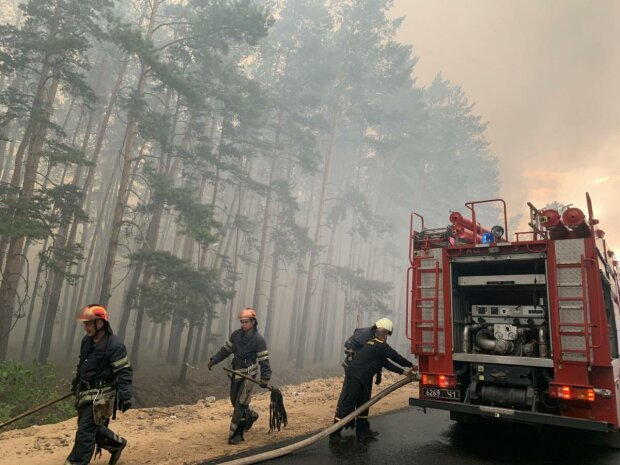 лісова пожежа на Луганщині, фото:  ДСНС