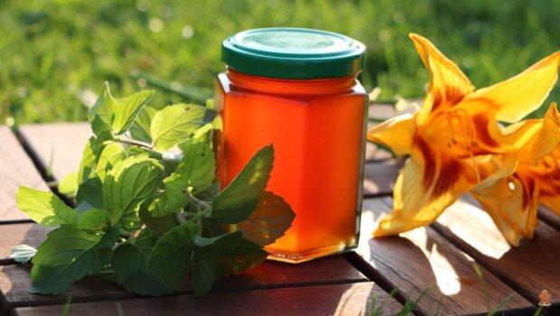 Домашній мед з меліси, фото YouTube