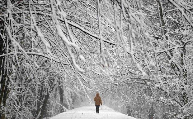 Українці повстали проти батька замерзлої на Житомирщині студентки