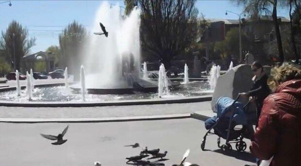 В Запорожье молодых парней поймали в фонтане за позорным занятием