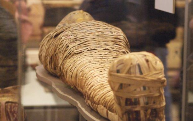 Археологи нашли древнюю мумию знатного египтянина
