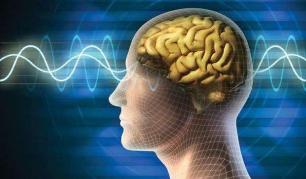 Иммунитет влияет на социальное поведение