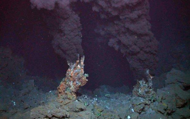 """Вчені знайшли """"волосся Венери"""" на дні океану"""