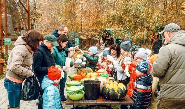 Львов встретит украинцев тыквами: какое оригинальное мероприятие планируют в сердце Галичины