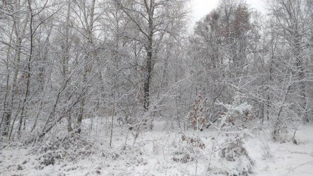 Зима, мороз - фото Знай.ua