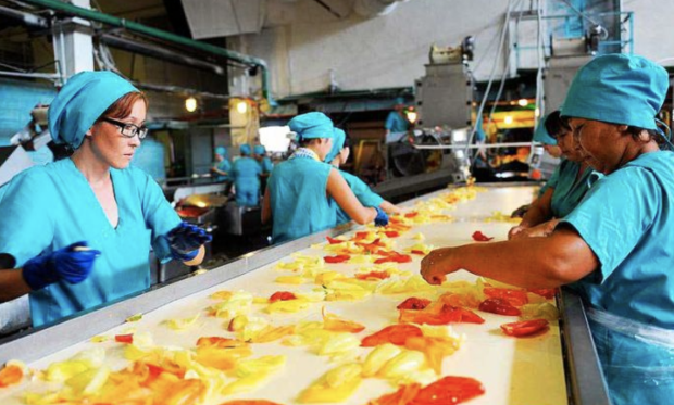 Польща заманює заробітчан захмарними доходами: дефіцит робочих рук та конкуренція