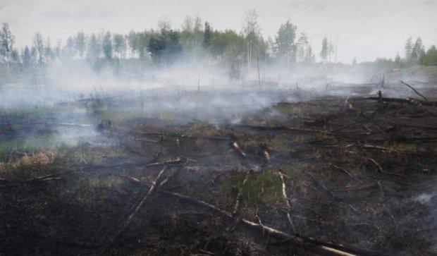 У Києві зафіксували перевищення вмісту токсичних речовин у повітрі