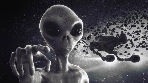 Если это не инопланетянин, то кто: странное существо случайно попало в кадр и перепугало сеть