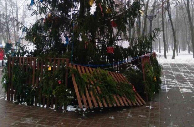 В Киеве вандалы сломали новогоднюю елку: vechirniy.kyiv.ua