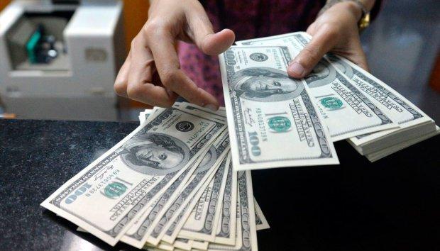 Пора бігти в обмінник: стало відомо, яким буде курс долара після вихідних