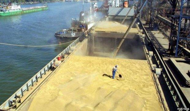 Украина заняла третье место среди лидеров экспорта зерна