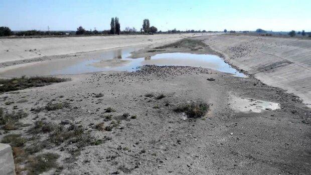 Крим втрачає воду, мешканці півострова моляться, а окупанти сподіваються на диво