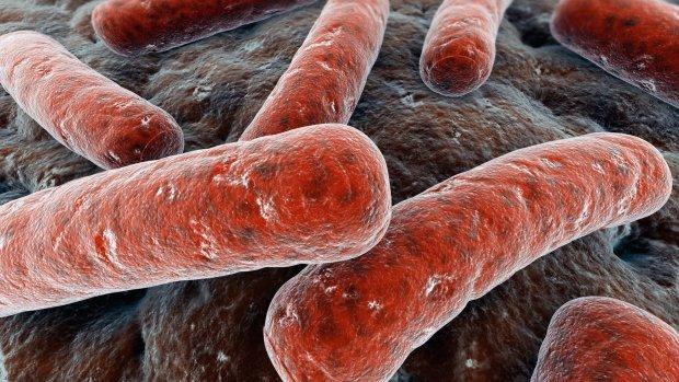 Вакцина на основі незвичайного компонента допоможе в лікуванні туберкульозу