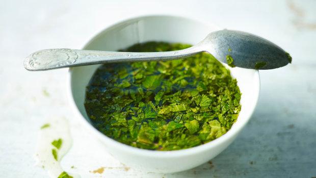 Рецепт свежего мятного соуса