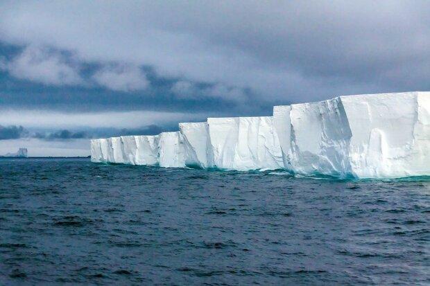 Льодовики Антарктиди, Жива планета